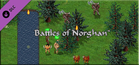 Picture of Battles of Norghan Gold Version