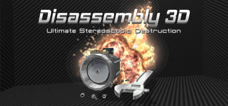 Picture of Disassembly 3D