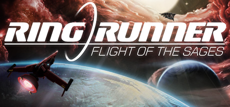 Picture of Ring Runner: Flight of the Sages