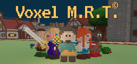 Picture of Voxel M.R.T.